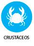 Crustacis